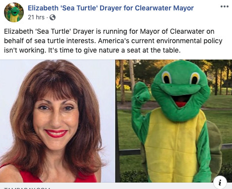 Elizabeth sea turtle drayer