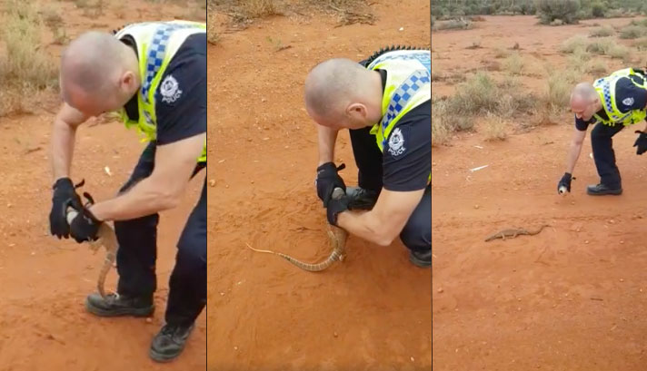 Police officer removes lizard's head that got stuck in Red Bull can.