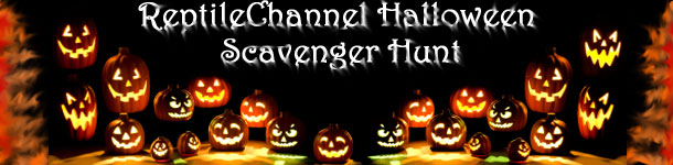 Reptile Channel Halloween Scavenger Hunt